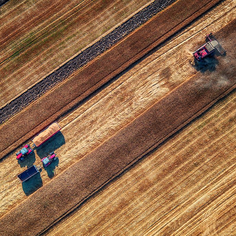 Landwirtschaft Portfolio